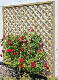madeley lattice trellis 1 8m x 1 8m from grange gardensite co uk