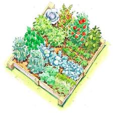 Permaculture Vegetable Garden Layout Garden Bed Layout The Vegetable Garden Garden Bed Layout Planning