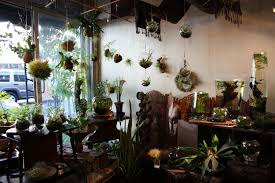 indoor garden house design with hanging glass bubble terrarium air