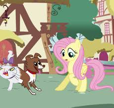 catdog catdog my little pony friendship is magic know your meme