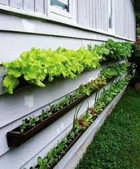 stylist and luxury wall mounted planter amazing ideas 1000 ideas