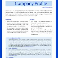 Data Entry Profile Resume Samples Of Business Profiles Shopgrat Sample Template Free