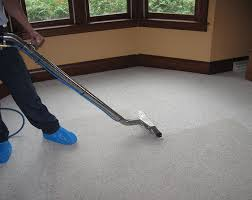 carpet stain removal seattle all green carpet cleaning all green