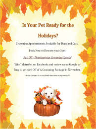 thanksgiving 10 pet grooming special at metropet veterinary