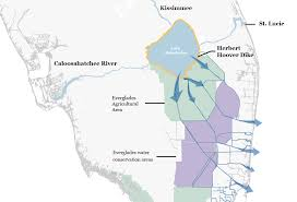 West Coast Of Florida Map by How Lake Okeechobee Flooding Is Adversely Affecting Florida U0027s