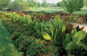 garden design garden design with small easy backyard landscaping