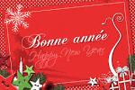 BONNE ANNEE - *Delfynus*