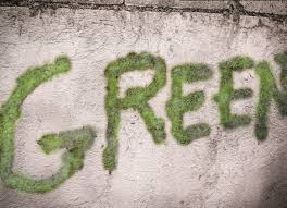 how to make moss graffiti 8 steps with pictures wikihow