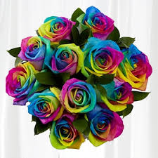 Different Color Roses One Dozen Rainbow Roses Without Vase Tired Of The Same Old Color