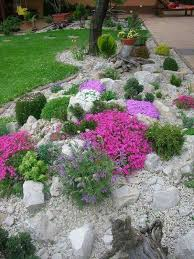 574 best rock garden ideas images on pinterest garden ideas