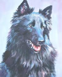 belgian sheepdog apartment belgian sheepdog portrait painting by lee ann shepard