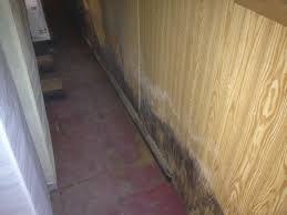 basement restoration technologies