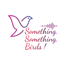 something something birds music trivia for the audiophile