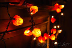 how to make fairy lights physalis crafts autumn fairy lights