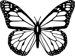 clipart black and white butterfly