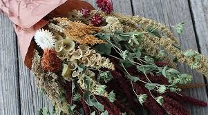 dried flowers how to air cut flowers slideshow johnny s