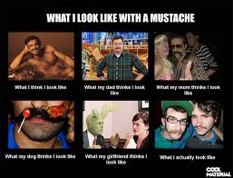 Mustache Meme - what i look like with a mustache cool material