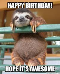 Wombat Memes - happy birthday wombat memes memes pics 2018