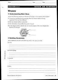 worksheets bacteria and viruses worksheet worksheets viruses