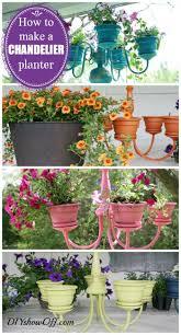 341 best gardening ideas images on pinterest