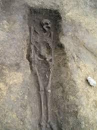 skeletal series these bones of mine