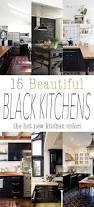 black cabinets kitchen best 25 black kitchen cabinets ideas on pinterest kitchen with