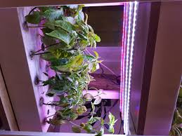fgc1 indoor gardening system farmergotchi