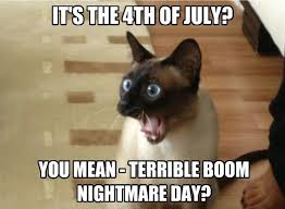 Boom Meme - lolcats boom lol at funny cat memes funny cat pictures with