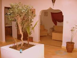 villa tazmin the whole house spacious country berber house