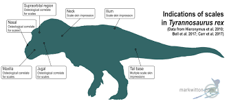 Credence Design Impression Mark Witton Com Blog Revenge Of The Scaly Tyrannosaurus