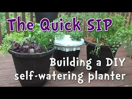 5 minute diy self watering container garden perfect for beginner