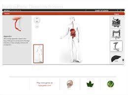 build a body digestive system gameup brainpop