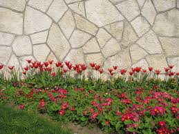 Ottoman Tulip by Turkish Adventures The Tulip Festival And International Film