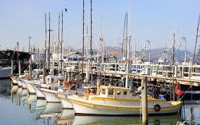 Fisherman S Wharf Fisherman U0027s Wharf San Francisco Street Performers Sea Lions U0026 Dining