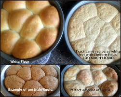 Bread Recipes Without Bread Machine Tips For Baking With Einkorn Flour Einkorn Com