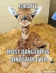Funny Dinosaur Meme - giraffe meme giraffe most dangerous dinosaur ever picsmine