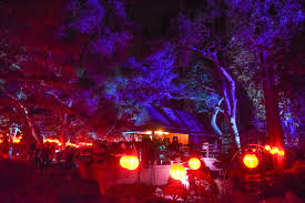 enchanted forest of light tickets descanso gardens enchanted forest of light sirens scoundrels