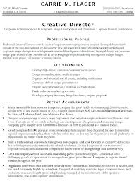 Sample Skills And Strengths In Resume Skills On Resume Example U2013 Okurgezer Co