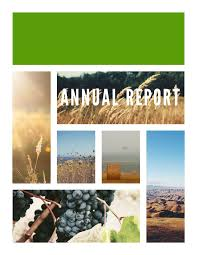 llc annual report template free annual report templates exles 6 free templates