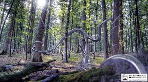 bigpixelhouse metal tree