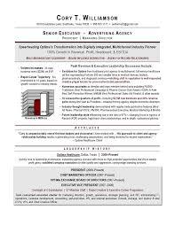 executive curriculum vitae marvellous inspiration award winning resumes 4 executive resume
