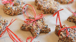 birdseed ornaments christmastime redeem your ground