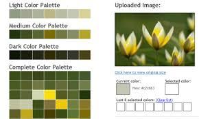 fresh interior best 19 color palette generators to help you design