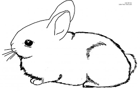 rabbit coloring pages coloringstar sheet animal mini