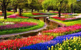 World Botanical Gardens The Keukenhof Park The Largest Botanical Garden Of The World Is