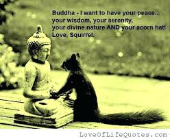 wedding quotes buddhist buddha quotes and quotes on peace and 19 also buddha