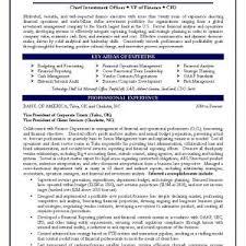 cfo resume samples pdf free cfo resume template writing a resume examples curriculum