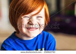 5 year boy stock images royalty free images vectors