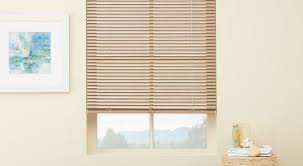 window blinds ideas wholechildproject org