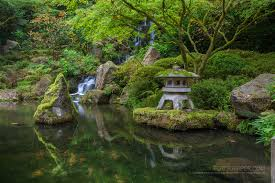 japanese garden pond home design ideas
